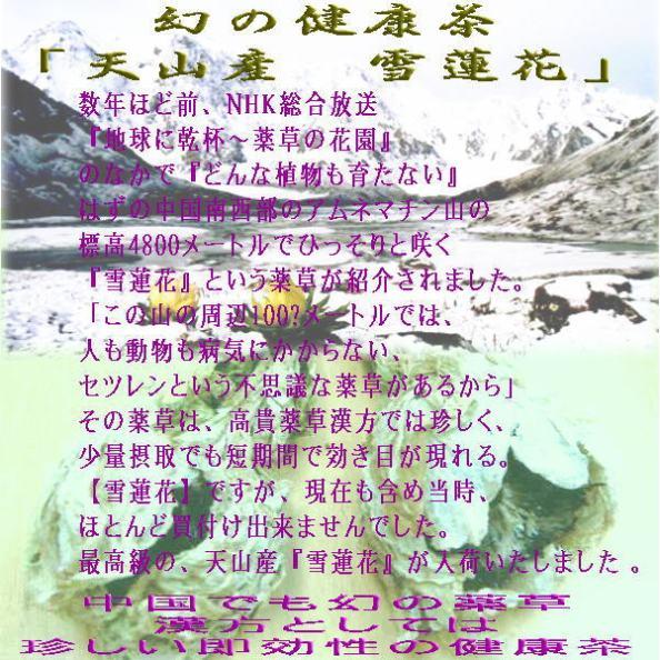 天山産『雪蓮花』は薬茶としての評価が非常に高い。