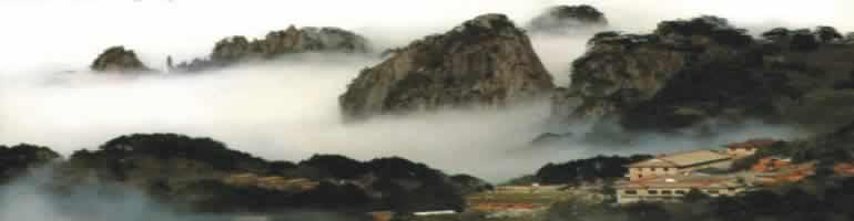 中国茶産地