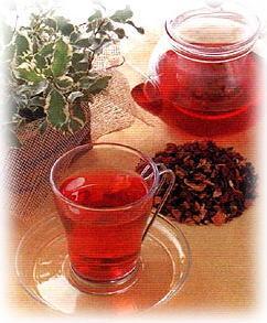 夏のバテ防止に五味子茶がオススメ